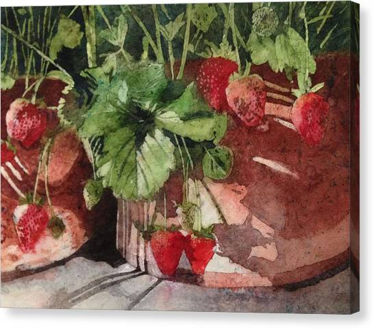 It's Berry Season Canvas Print