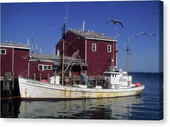 Jacob Pike Fishing Boat In Maine Canvas Print by Carl Purcell