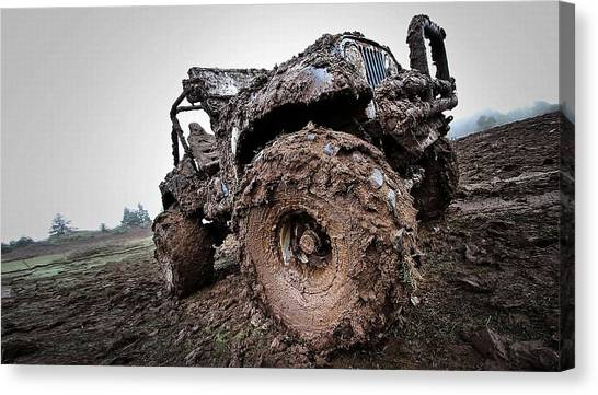 Triceratops Canvas Print - Jeep by Maye Loeser