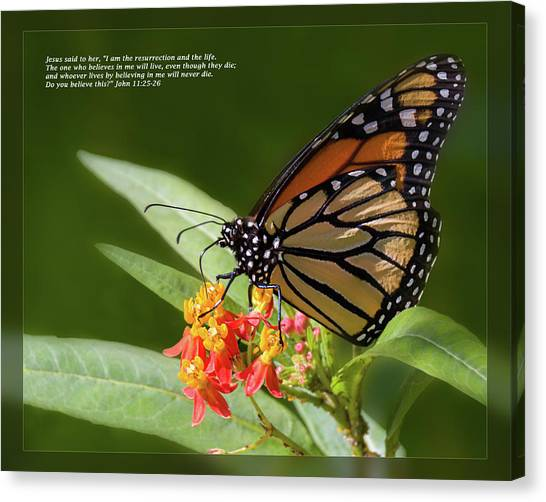Canvas Print featuring the photograph John 11 25-26 by Dawn Currie