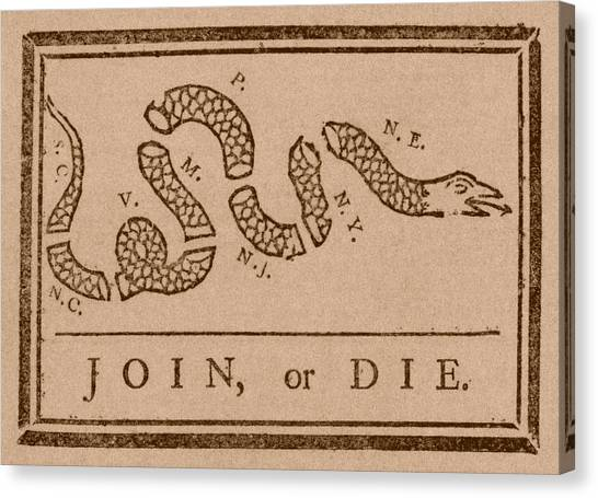 Garden Snakes Canvas Print - Join Or Die by War Is Hell Store