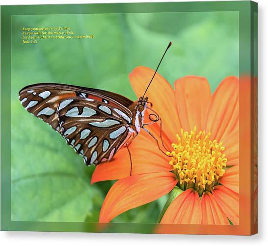 Canvas Print featuring the photograph Jude 1 21 by Dawn Currie