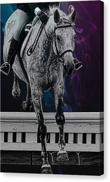 Jumping Vertical Artwork Canvas Print