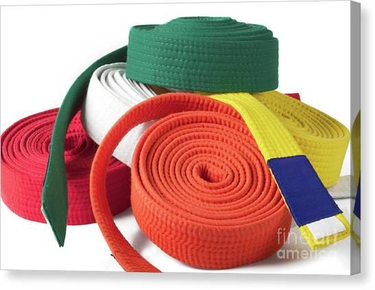 Taekwondo Canvas Print - Karate Belts by Shaun Wilkinson
