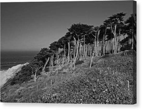 Lands End In San Francisco Canvas Print