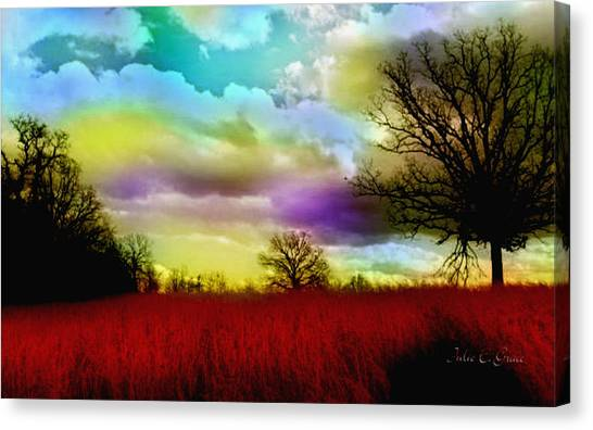 Landscape In Red Canvas Print