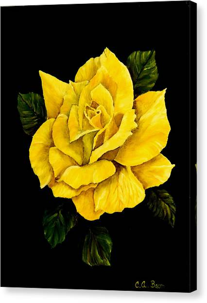 Large Yellow Rose Canvas Print