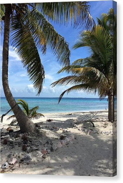 Canvas Print - Laughing Bird Caye by Julia Breheny