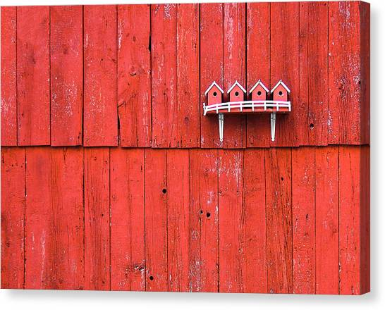 Red Knot Canvas Print - Little Bird Houses by Todd Klassy
