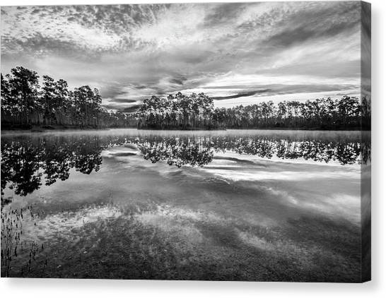 Everglades Canvas Print - Long Pine Bw by Jon Glaser