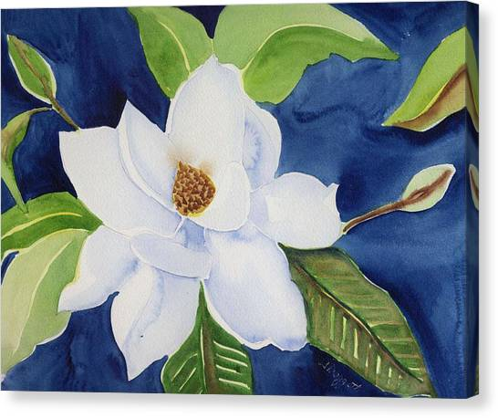 Magnolia Canvas Print by Janet Doggett