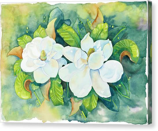Magnolias Canvas Print by Cathy Locke