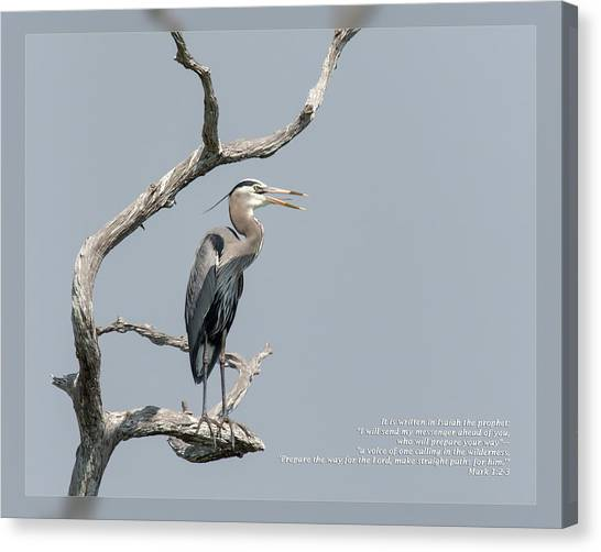 Canvas Print featuring the photograph Mark 1 2-3 by Dawn Currie