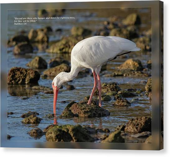 Canvas Print featuring the photograph Matthew 5 6 by Dawn Currie
