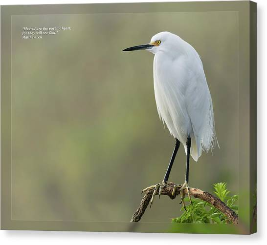 Canvas Print featuring the photograph Matthew 5 8 by Dawn Currie