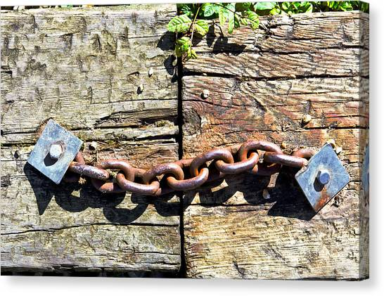Chain Link Canvas Print - Metal Chain by Tom Gowanlock