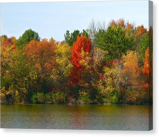 Michigan Fall Colors Canvas Print