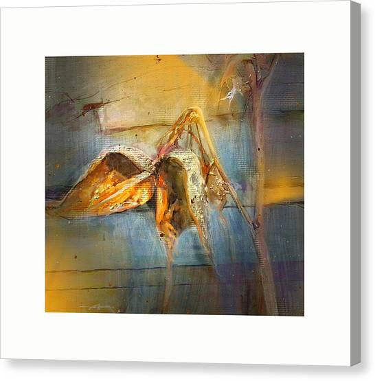 Milkweed Canvas Print by Bob Salo