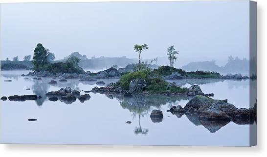 Mist And Trees Canvas Print