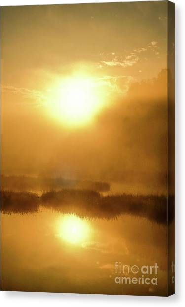 Misty Gold Canvas Print