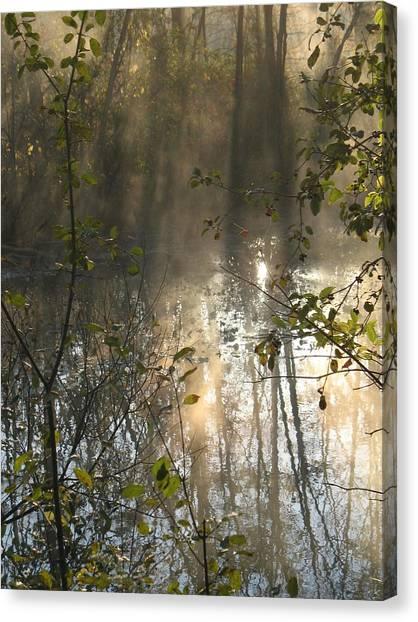 Misty Morning Canvas Print by Ralph Baginski