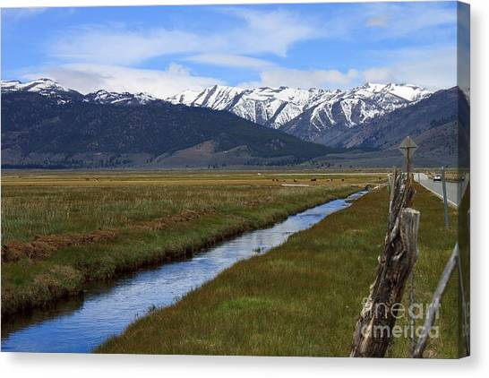 Mono County Nevada Canvas Print