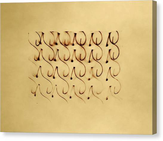 Canvas Print featuring the photograph Monogram  by Dutch Bieber