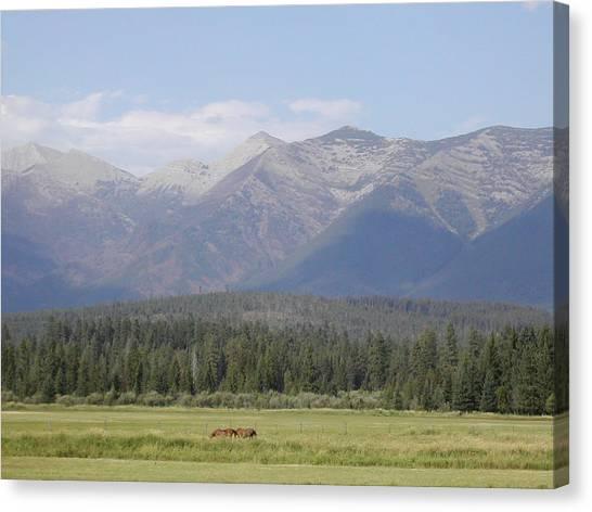 Montana Mountains Canvas Print by Lisa Patti Konkol