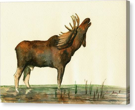 Moose Canvas Print - Moose Watercolor Painting. by Juan  Bosco