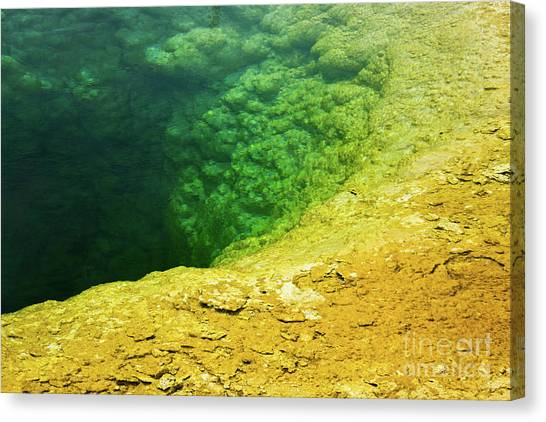 Yellowstone Canvas Print - Morning Glory Pool by Delphimages Photo Creations