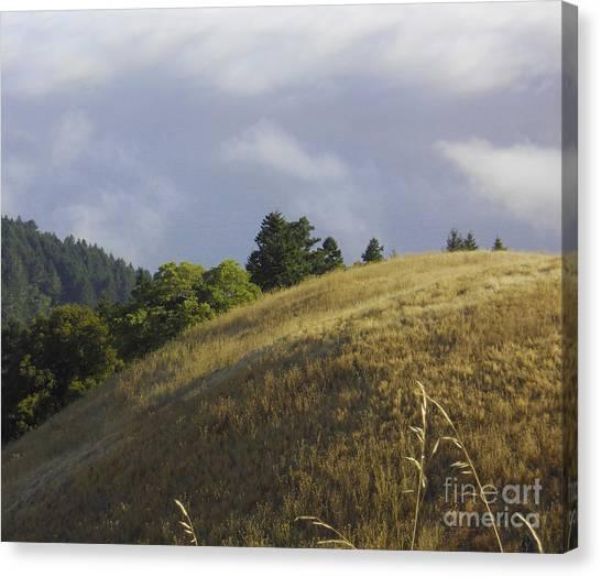 Mt. Tamalpais Study #1 Canvas Print