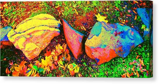 My Back Yard Rocks Canvas Print