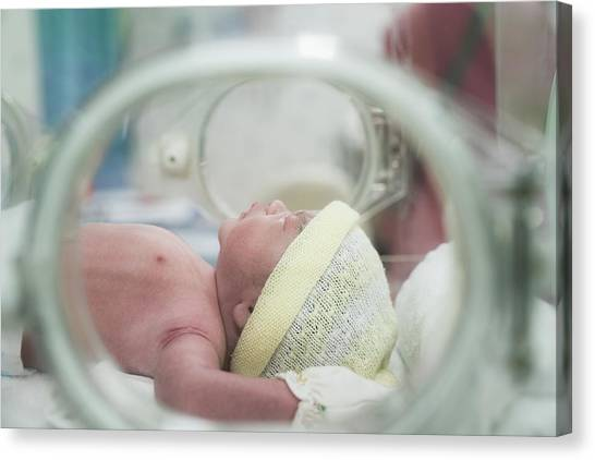 Preemie Canvas Print - New Born Baby by Anek Suwannaphoom