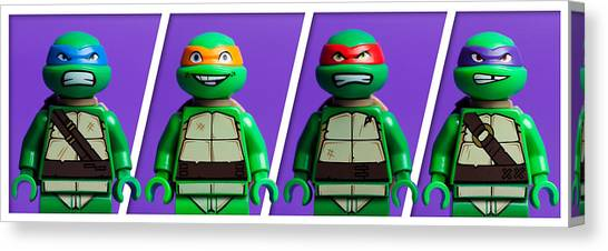 Kung Fu Canvas Print - Ninja Turtles by Samuel Whitton
