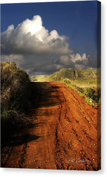 Noble Road Canvas Print by Richard Gordon
