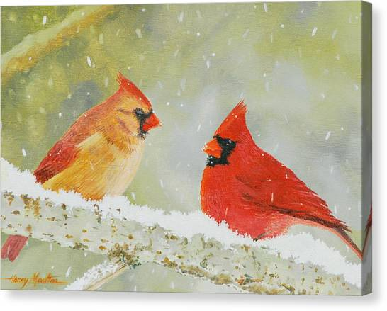 Northern Cardinals Canvas Print