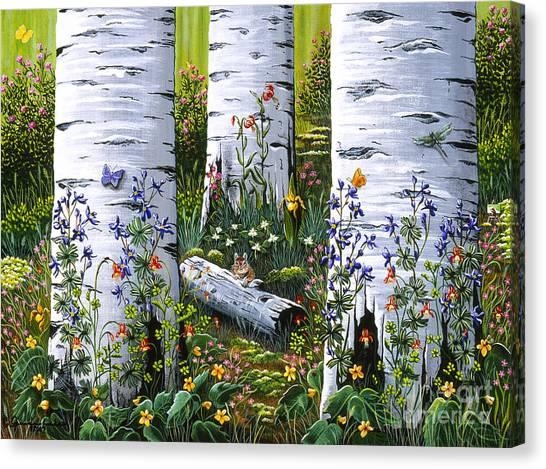 Old Aspen Grove Canvas Print