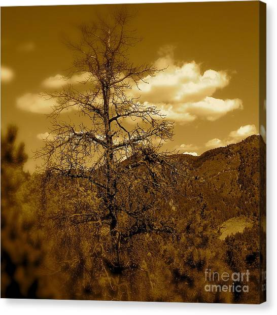 On To Pike's Peak Canvas Print by Sergio Geraldes