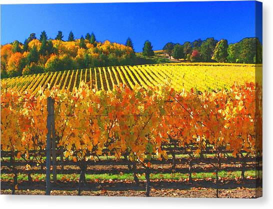 Oregon Wine Country Canvas Print