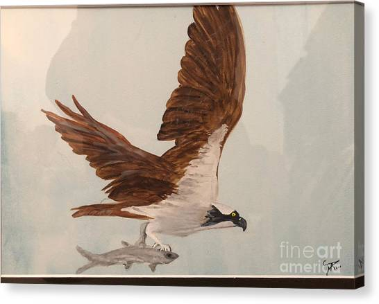 Canvas Print featuring the painting Osprey by Donald Paczynski