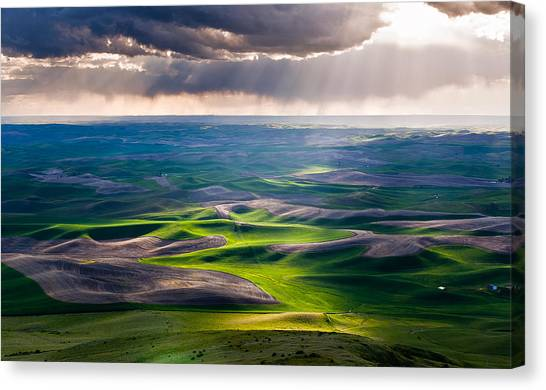 Palouse Hills Canvas Print