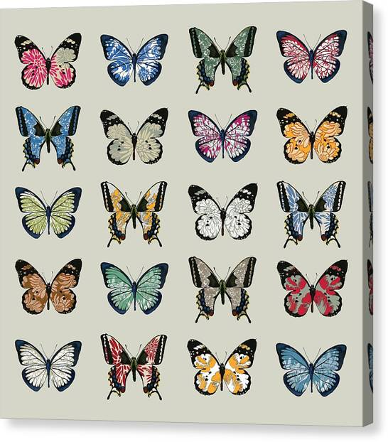 Butterflies Canvas Print - Papillon by Sarah Hough