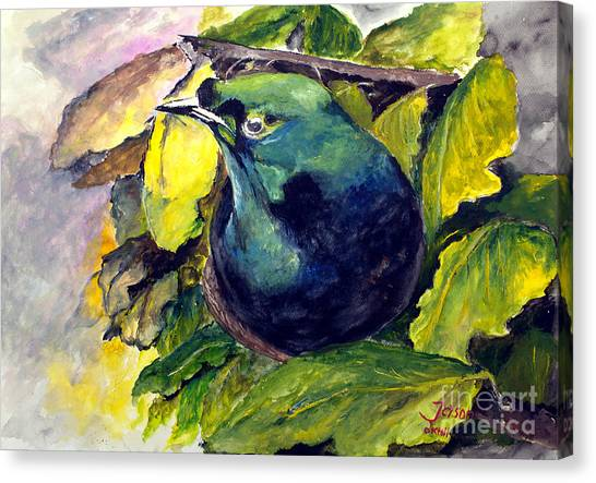 Paradise Bird Canvas Print
