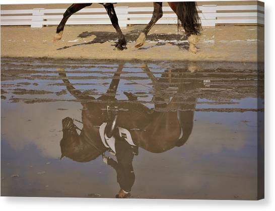 Pas De Deux Reflection Canvas Print by JAMART Photography