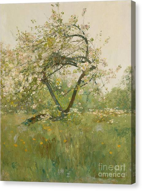 Blooming Tree Canvas Print - Peach Blossoms by Childe Hassam