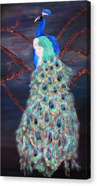 Peacock  Canvas Print by Mikki Alhart