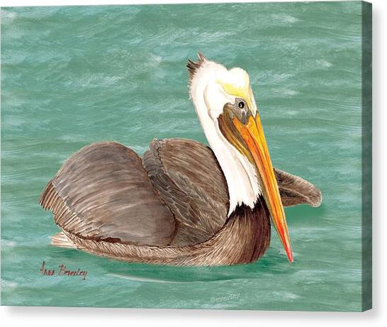 Pelican Floating Canvas Print