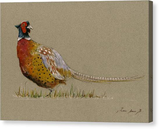 Pheasant Canvas Print - Pheasant Bird Art by Juan  Bosco