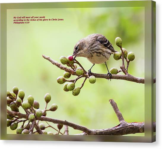 Canvas Print featuring the photograph Philippians 4 19 by Dawn Currie