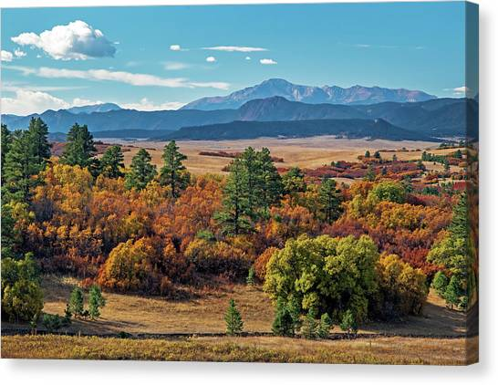 Pikes Peak Over Scrub Oak Canvas Print